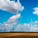 Coronakrise lässt Ökostrom-Anteil steigen