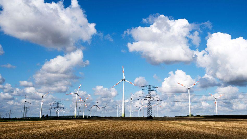 Windräder und Hochspannungsleitungin Niedersachsen: Viel zu wenig Ökostrom