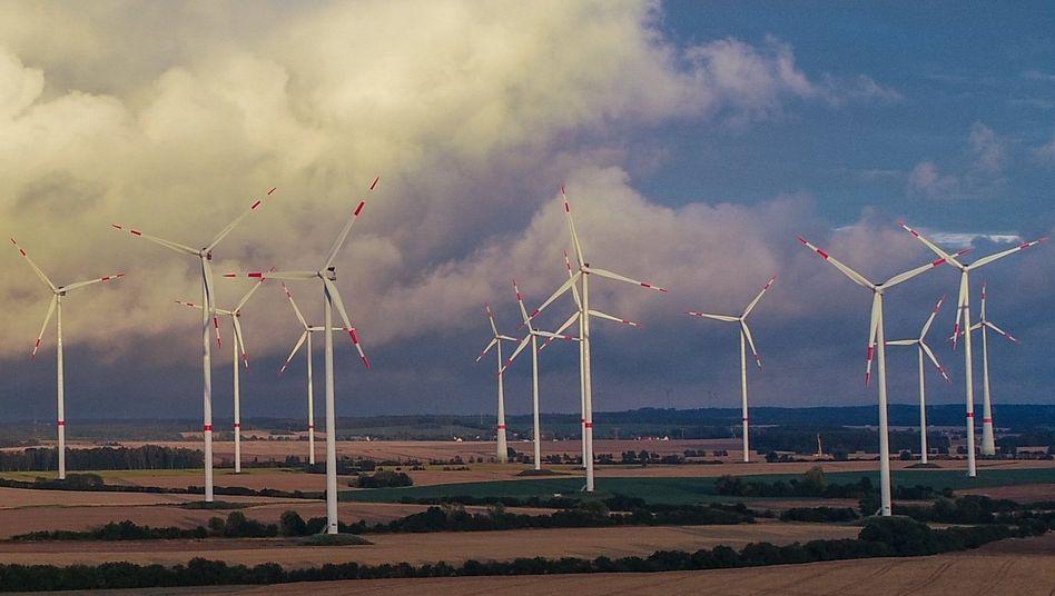 Windpark in Brandenburg: Anlagen mit einer Leistung von 1000 Megawatt werden beklagt