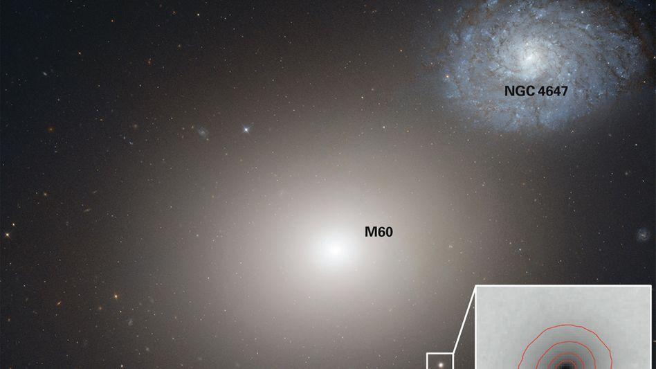 """Aufnahme des """"Hubble""""-Weltraumteleskops: Zwerggalaxie M60-UCD1 unterhalb von Galaxie M60"""