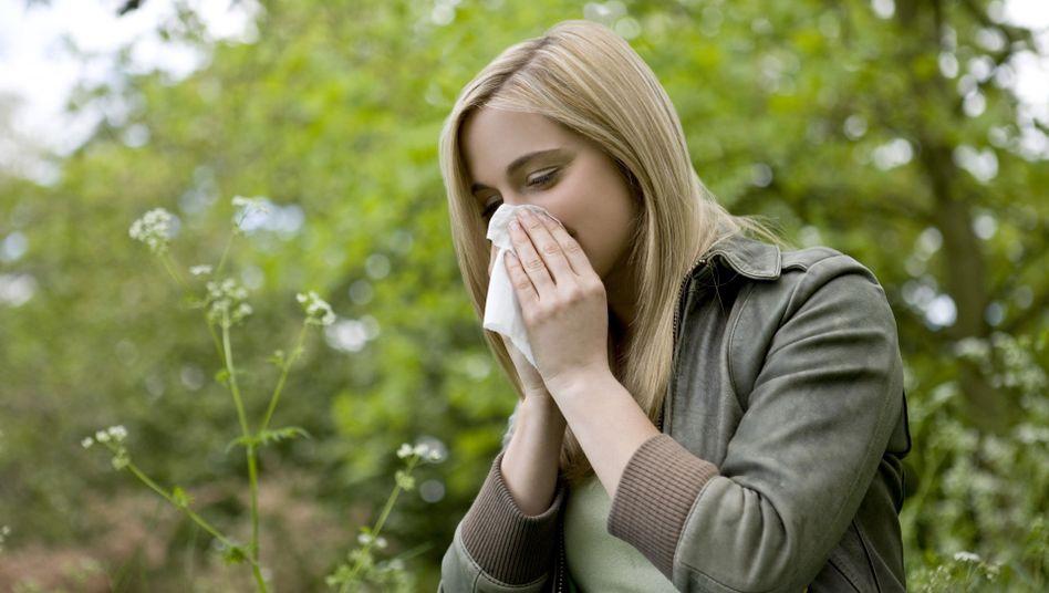 Lästige Heuschnupfen-Symptome: Immunisierung des Körpers ist langwierig