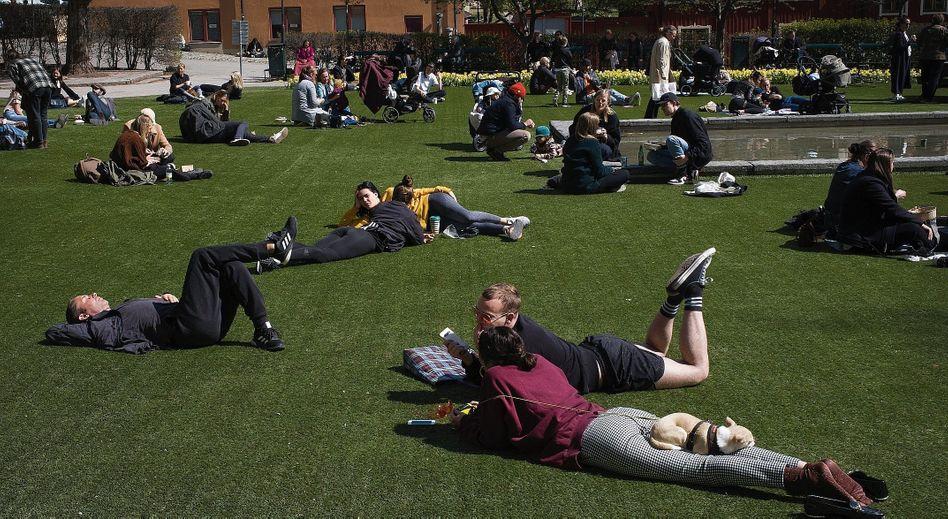 Parkbesucher im Stockholmer Bezirk Södermalm am 7. Mai:Woher kommt dieser große Konsens?