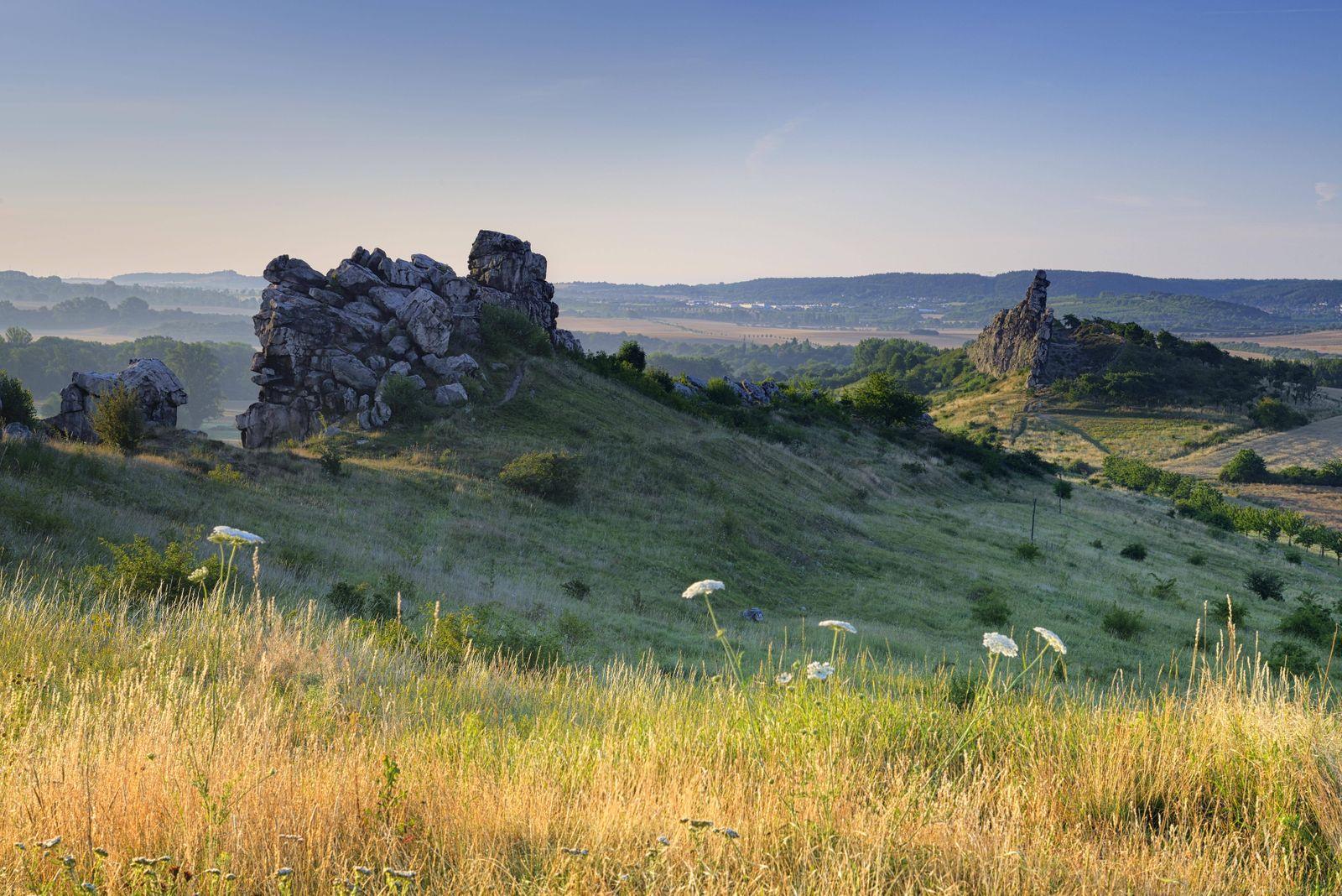 Felsformation Naturschutzgebiet Teufelsmauer Morgenlicht bei Weddersleben Harz Sachsen Anhalt