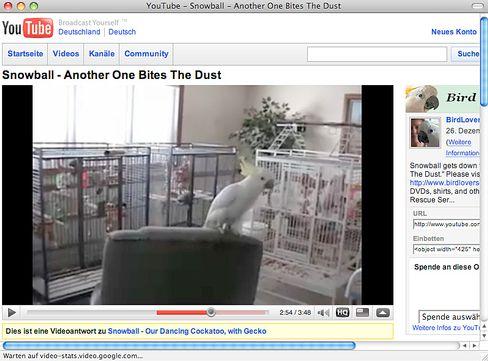 """Youtube-Screenshot: Kakadu """"Snowball"""" kann tanzen"""