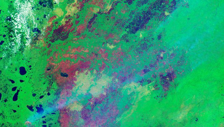 Das linke Bild zeigt die Szene in natürlichen Farben.Das rechte kombiniert kurzwelliges Infrarot, nahes Infrarot und grünes Licht, um aktive Feuer (hellrot), verkohltes Land (dunkleres Rot) und intakte Vegetation (grün) hervorzuheben