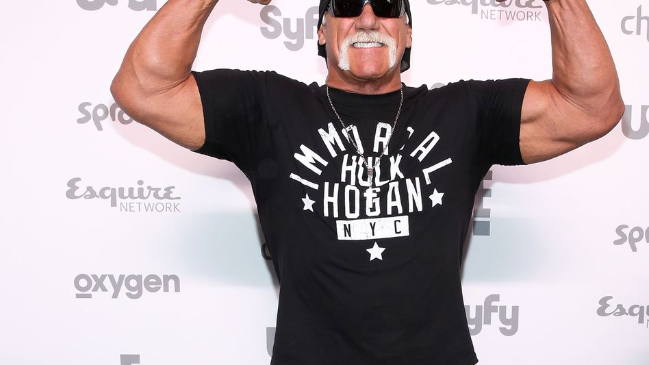 Hulk Hogan alias Terry Bollea