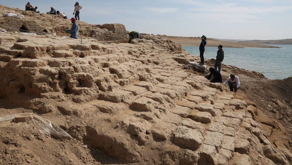 """Palast am Ostufer des Tigris: """"Wir haben so schnell gegraben, wie wir konnten."""""""