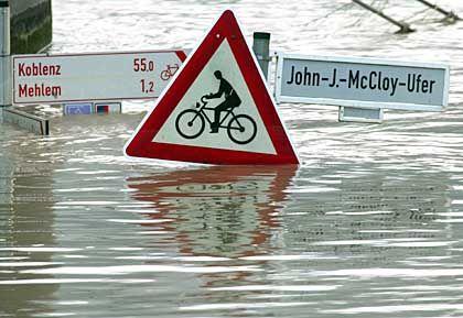 Radfahrer sollten ihre Schwimmflügel nicht vergessen: Überflutetes Rheinufer in Bonn-Mehlem