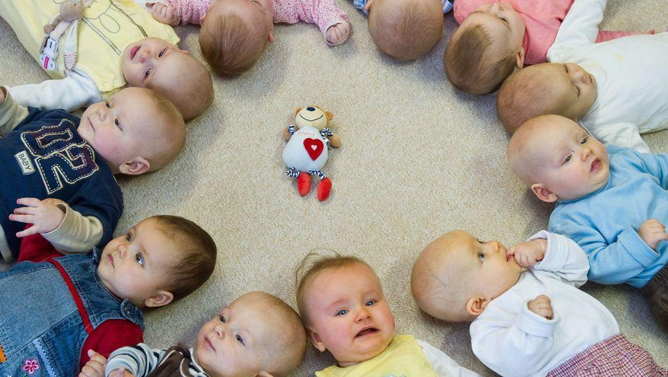 Babys in der Krippe: Betreuungsgeld als Anti-Kita-Programm