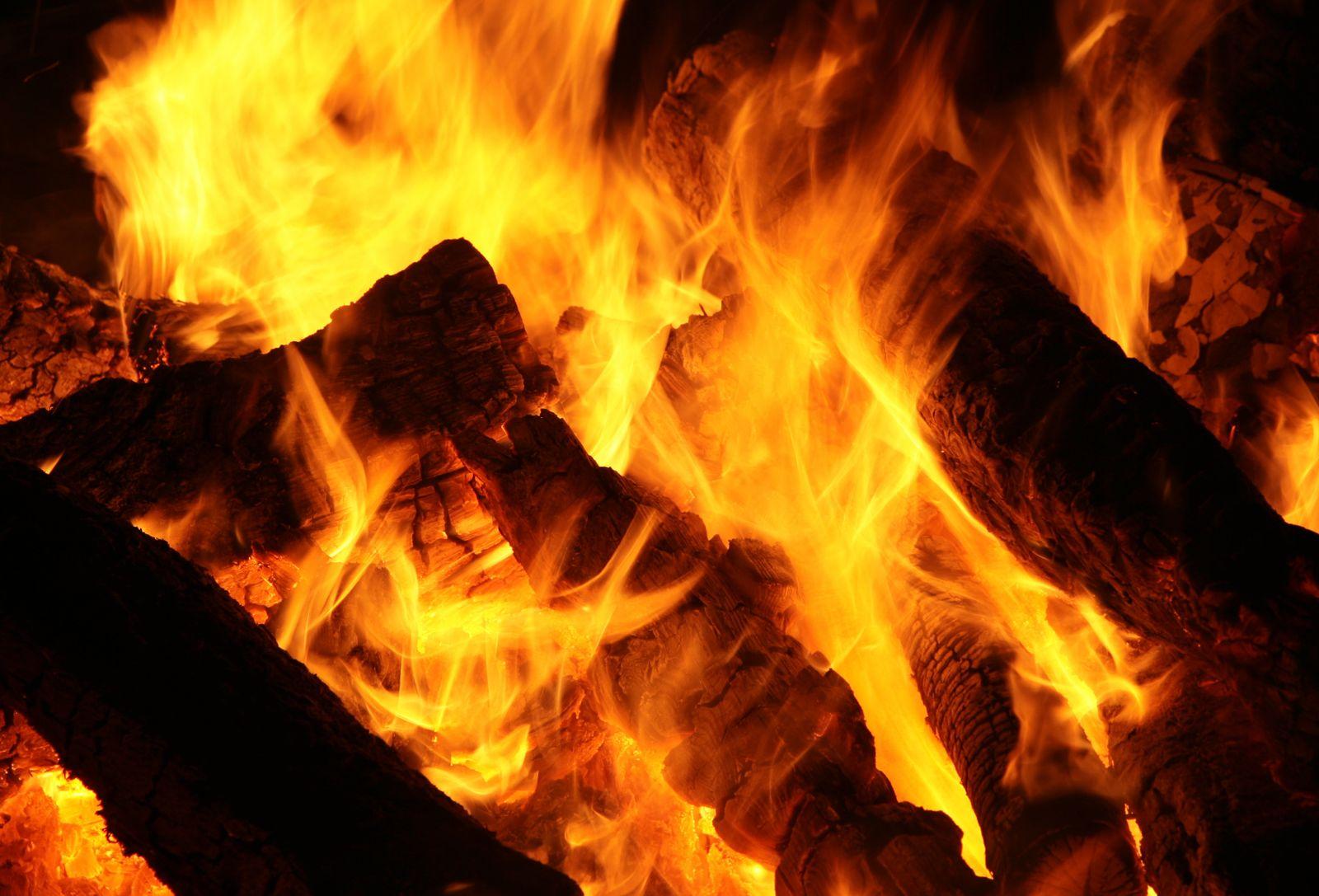 Kaminfeuer / Feuer / Brennholz / Kamin