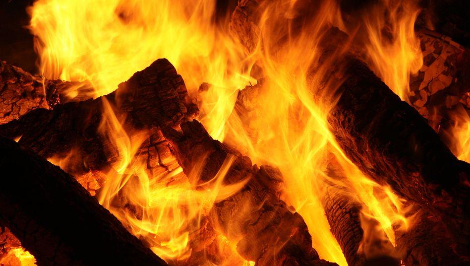"""Holzfeuer in einem Kamin: """"Zu viele Holzöfen und -kamine sind Staubschleudern"""""""
