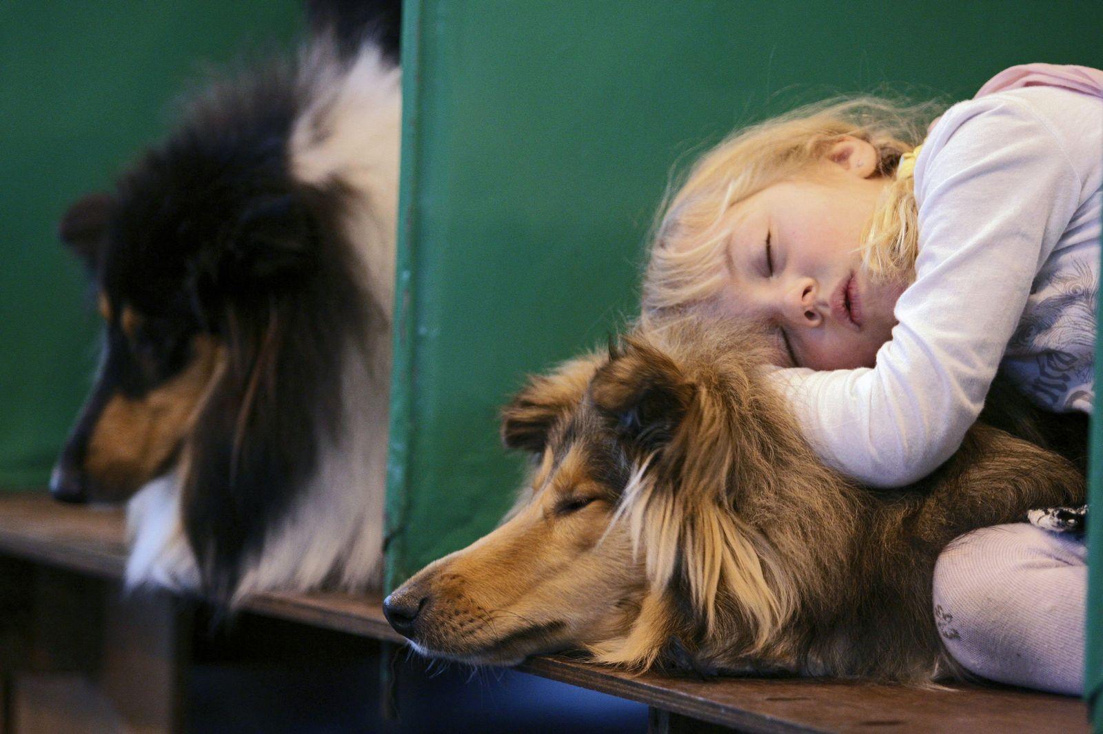 Kind mit Hund / Hundetherapie