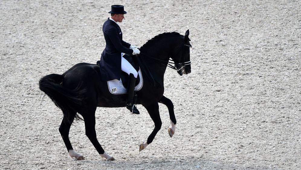 Karriereende von Totilas: Vom Wunderpferd zum Sorgenkind