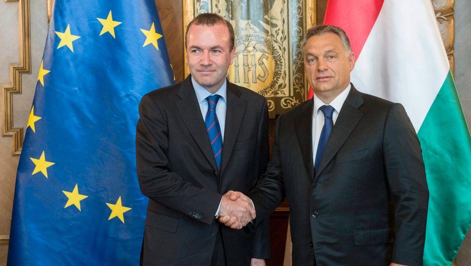 EVP-Fraktionschef Weber, Ungarns Regierungschef Orbán: Muss Weber die Orbán-Truppe aus seiner Fraktion werfen?