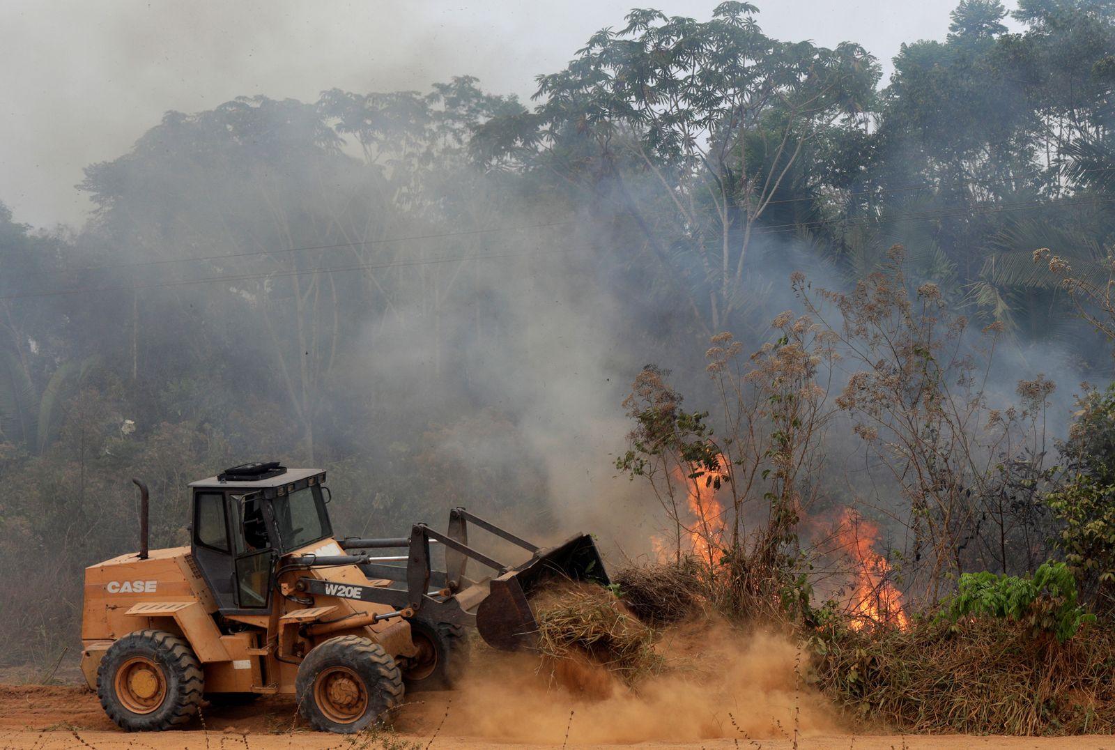 Waldbrände / Amazonas