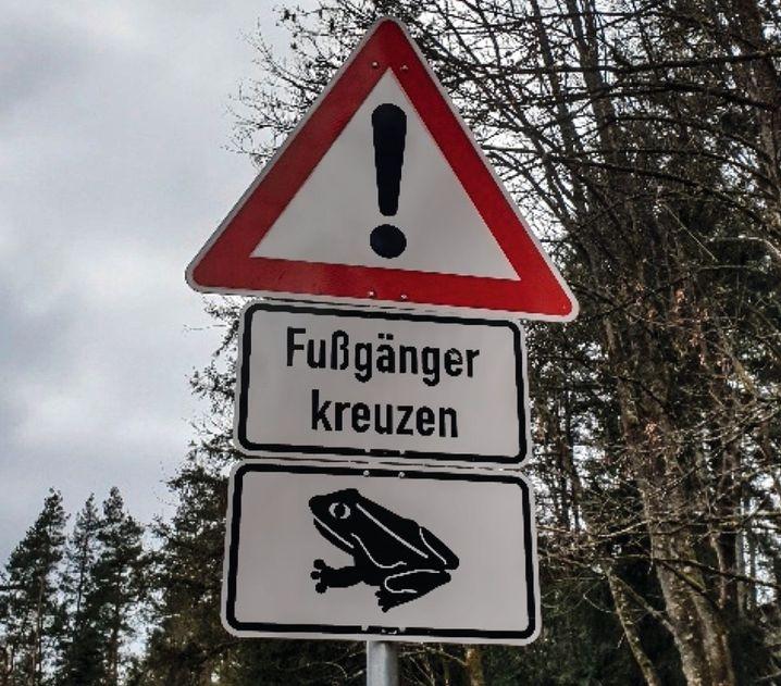 An einer Straße beim Veldensteiner Forst