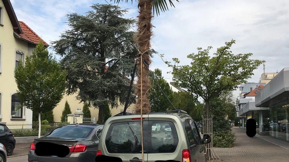Mit seinem Transport überschritt der Mann die zulässige Fahrzeughöhe