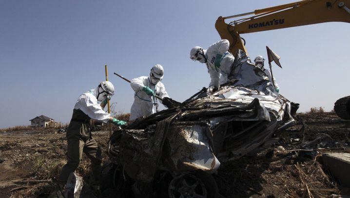 Japanisches Katastrophengebiet: Trostlose Suche