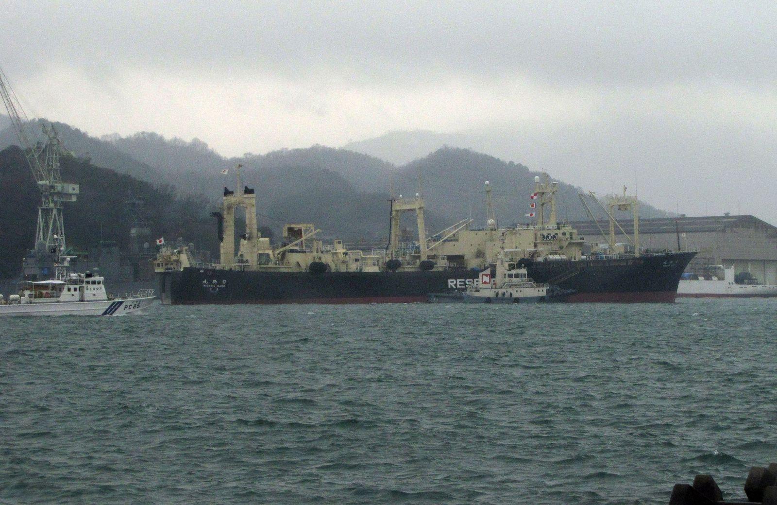 Walfang/Japan
