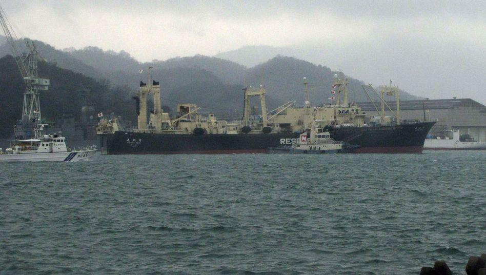 """Walfangschiff """"Nisshin Maru"""" (am 28. Dezember 2012): Kurs auf die Antarktis"""