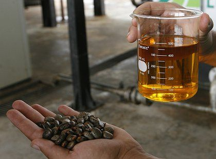 Biodiesel made from castor beans at a refinery in Brazil. Lula da Silva, Brazil's president, still sees great potential in biofuels, but Oxfam isn't so sure.
