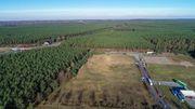 Teslamuss Waldrodung in Grünheide schon wieder stoppen