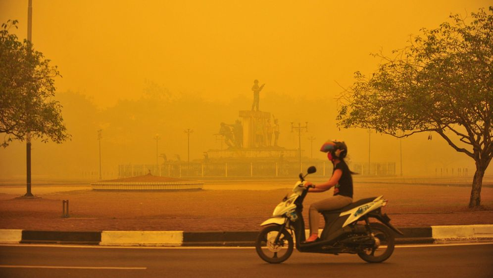Brände in Indonesien: Klimakiller in Orange
