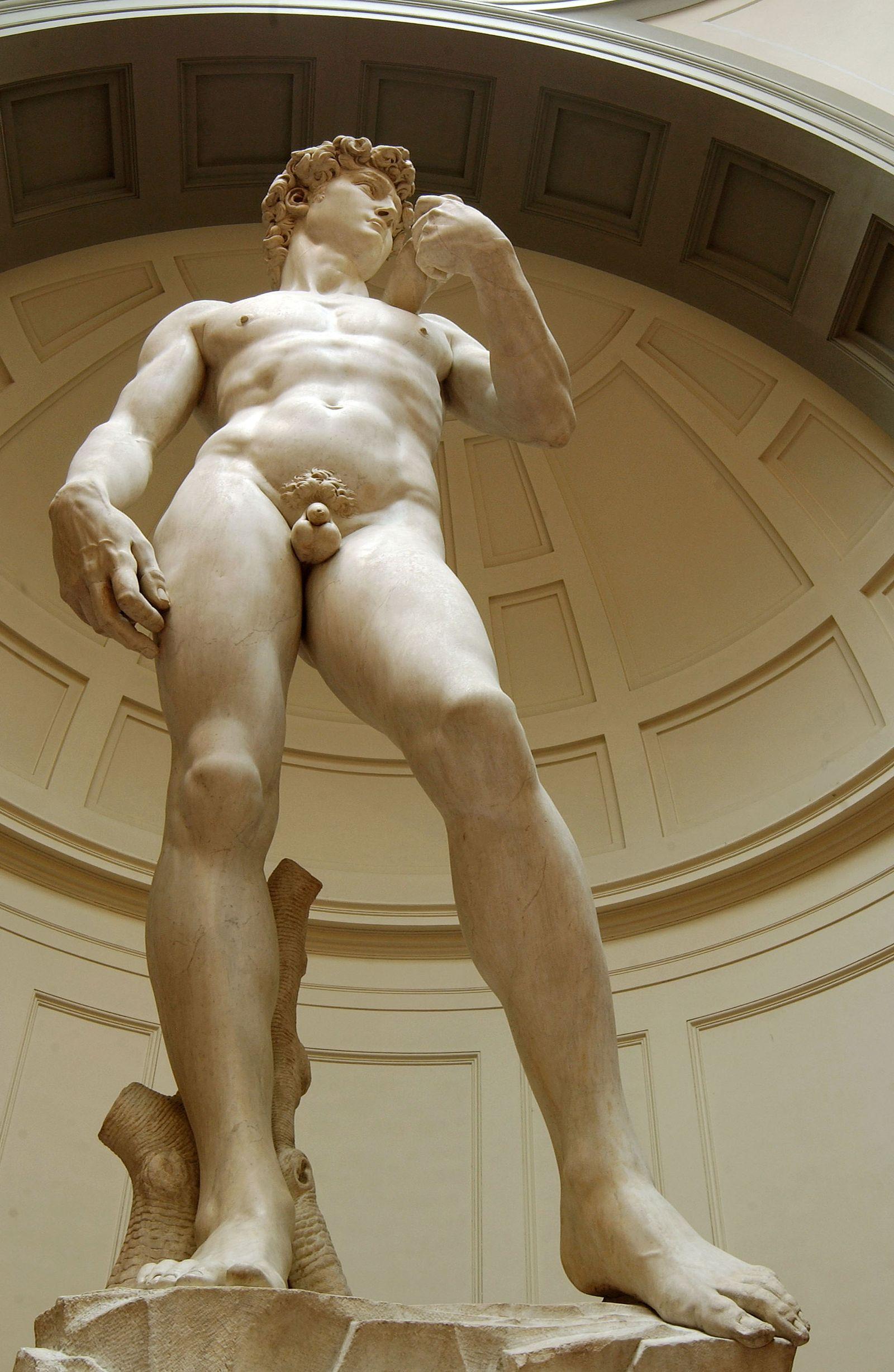 Michelangelo / David