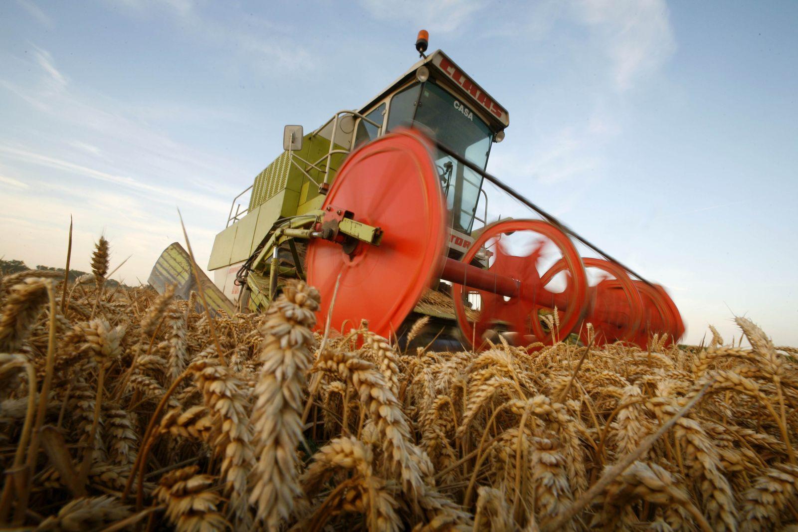 Weizen-Ernte Frankreich