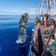 Im Boden der Weltmeere lagern bis zu 16 Millionen Tonnen Mikroplastik