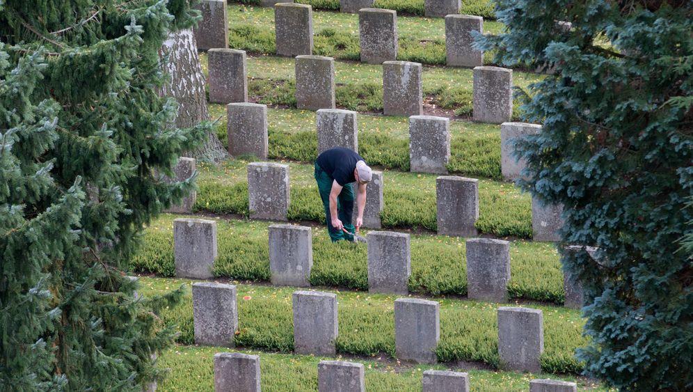 Friedhofsgärtner: Erde zu Erde
