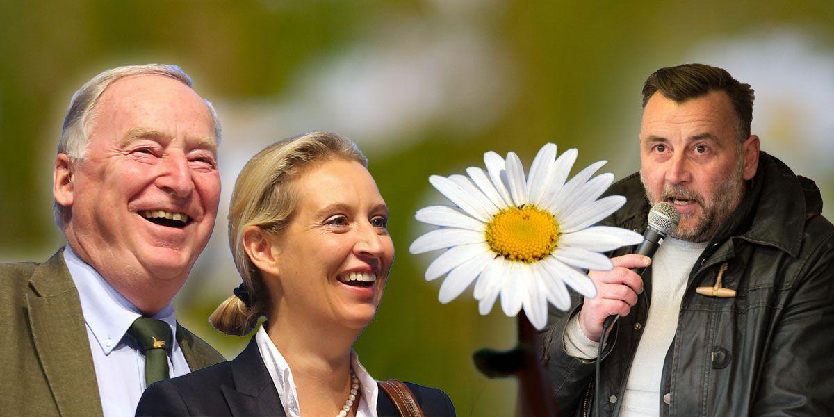 Gauland und Weidel mit Bachmann / Afd und Pegida
