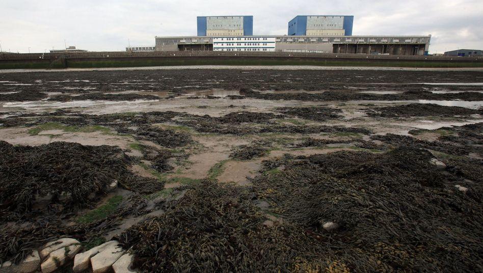 AKW Hinkley Point, Blöcke A und B: Steuergeld für unrentable Atommeiler