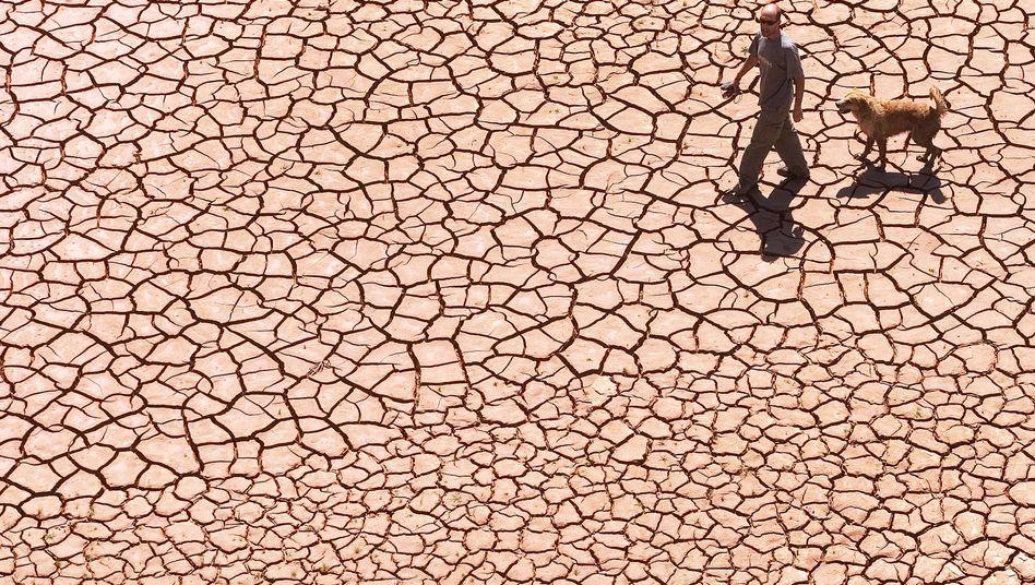 Dürre in Spanien (Archivbild)