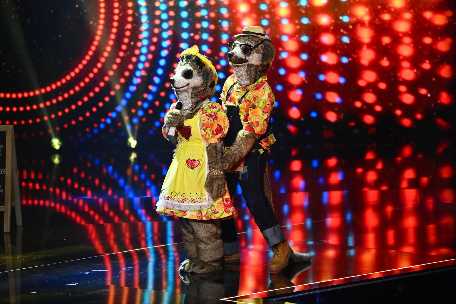 """Start der neuen Staffel von """"The Masked Singer"""""""