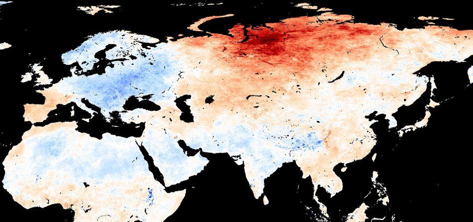 Temperaturkarte für den Monat Mai: Werte über (rot) und unter (blau) dem Langzeit-Mittel