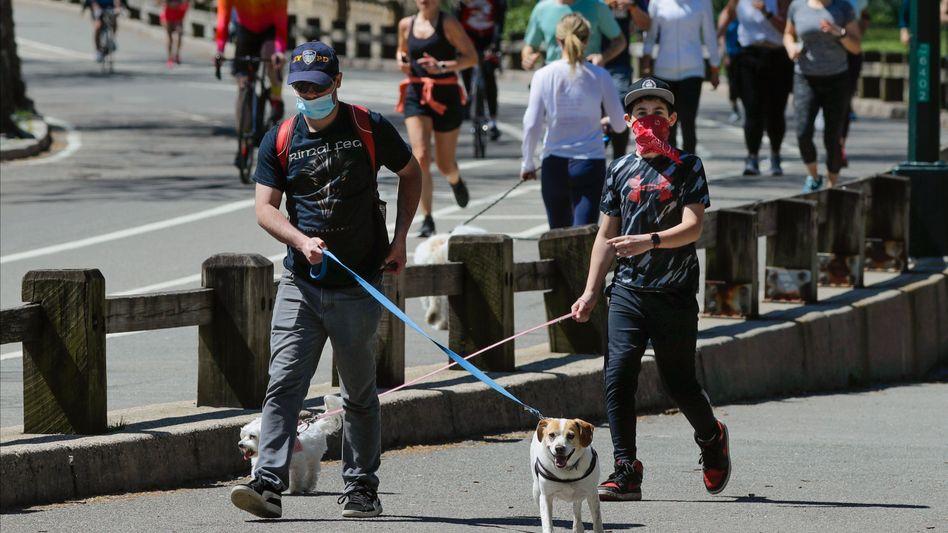 New Yorker führen im Central Park ihre Hunde aus: Fast jeder Fünfte hat nach vorläufigen Zahlen Antikörper im Blut