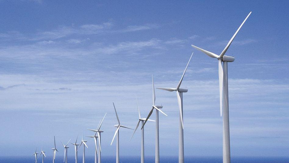 Windpark auf Hawaii: US-Hersteller kämpfen gegen Billigkonkurrenz