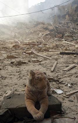 """Spielzeugtiger inmitten der Zerstörungen in Beirut: """"Der Libanon stirbt"""""""
