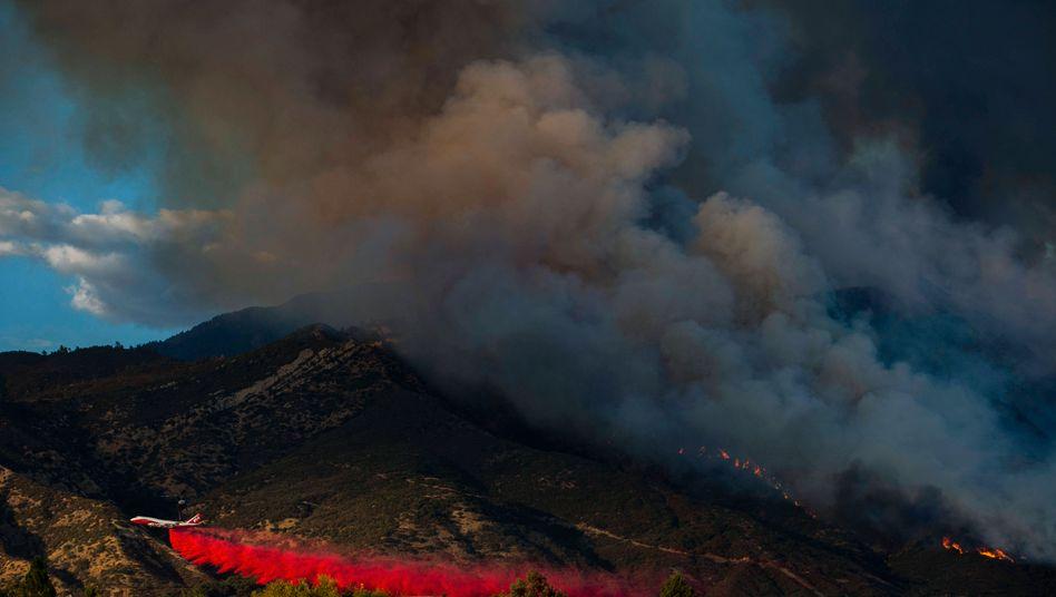 Löscharbeiten im San Bernardino National Forest