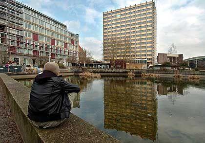 Universität Hamburg: 320 Plagiate registriert.