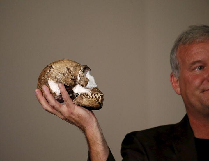 Maßstab: Lee Berger mit einem rekonstruierten Naledi-Schädel - deutlich kleiner als der moderner Menschen.
