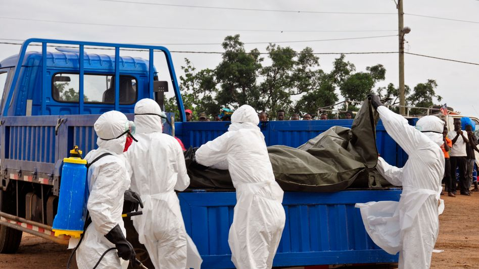 Helfer bergen ein Ebola-Opfer in Monrovia: Für etwa die Hälfte der Infizierten kommt jede Hilfe zu spät