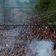 61.000 Fans im Stadion