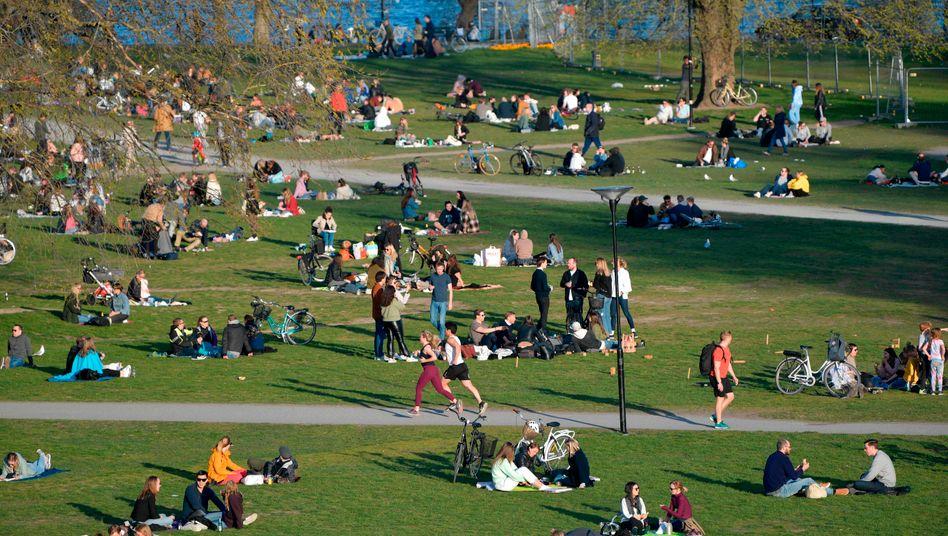 Park in Stockholm: Warum auch die Schweden nicht einfach ganz normal weiterleben