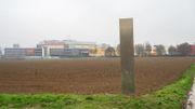 Monolith auf Feld in Sulzbach entdeckt