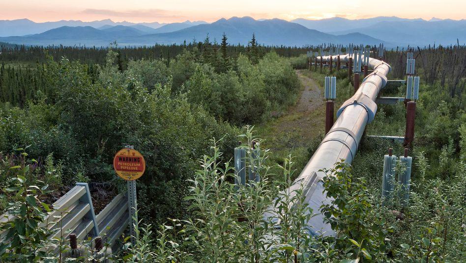 Rohre der Alyeska-Ölpipeline in Alaska