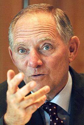 """Innenminister Schäuble: """"Nicht augenzwinkernd erwarten, dass gefoltert wird"""""""