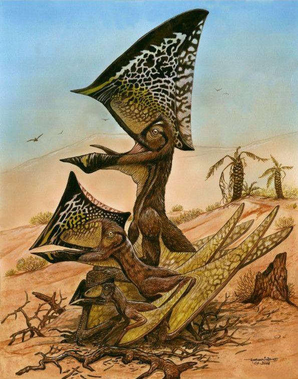 EINMALIGE VERWENDUNG Fliegende Reptilien/ Pterosaurier