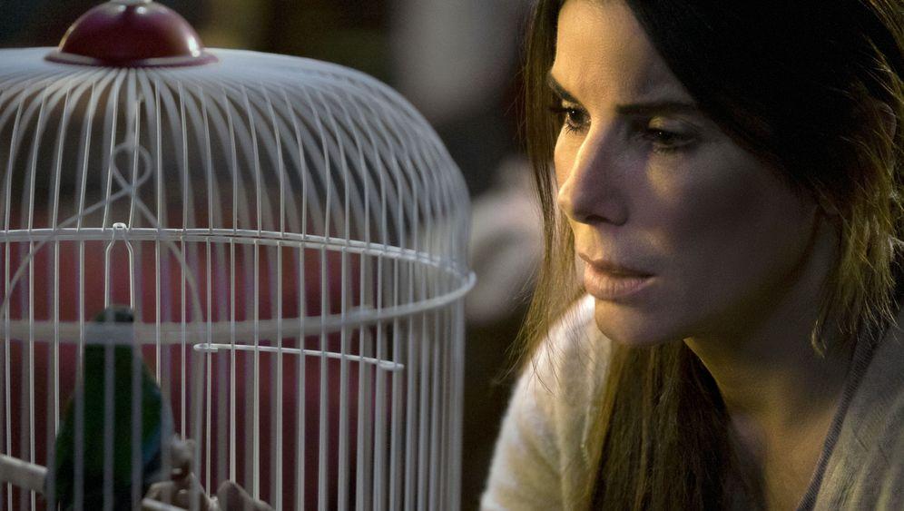 """""""Bird Box"""" mit Sandra Bullock: Hör auf die Vögel!"""